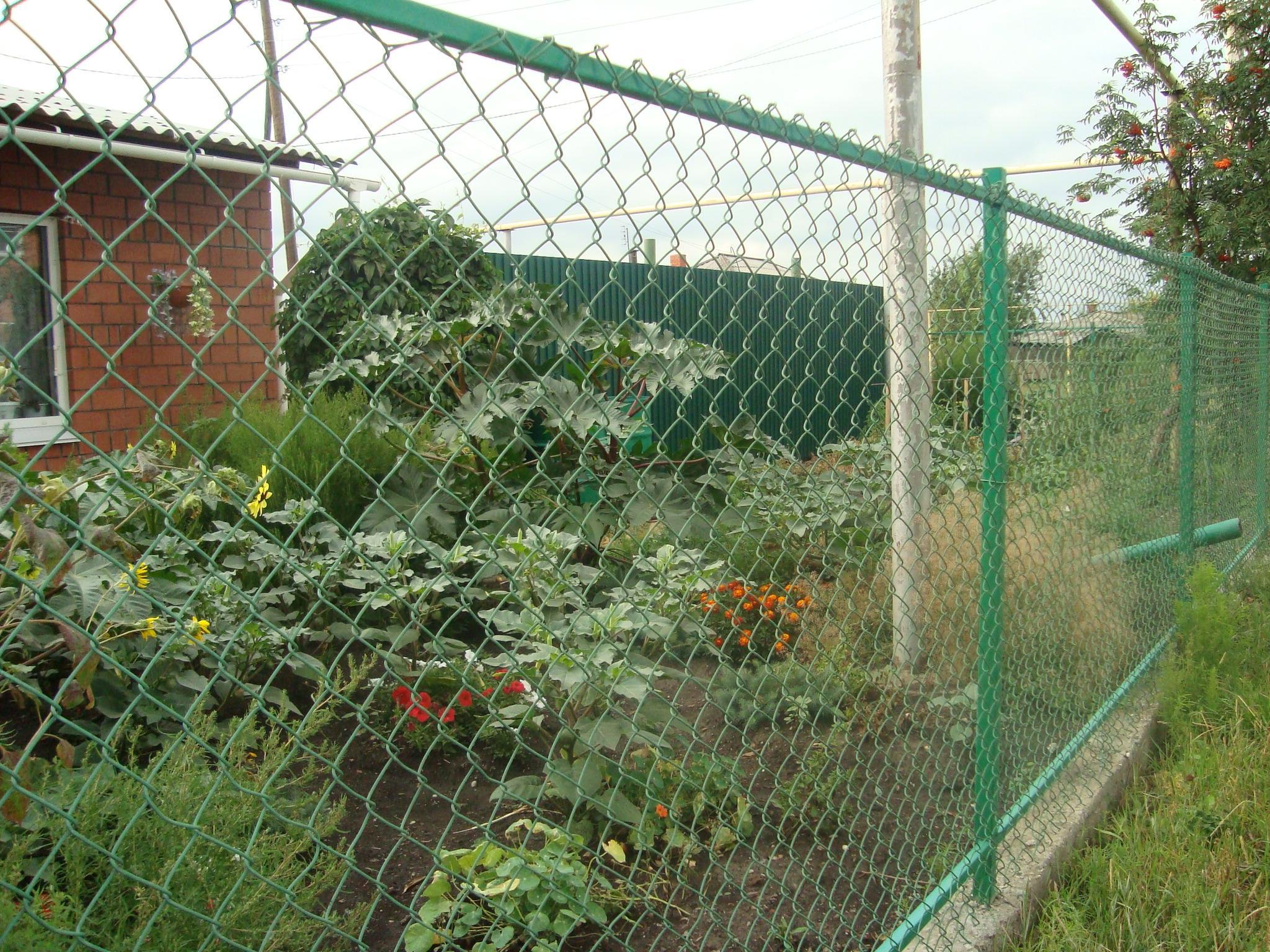 фото забор из сетки рабицы своими стереотип, мне кажется